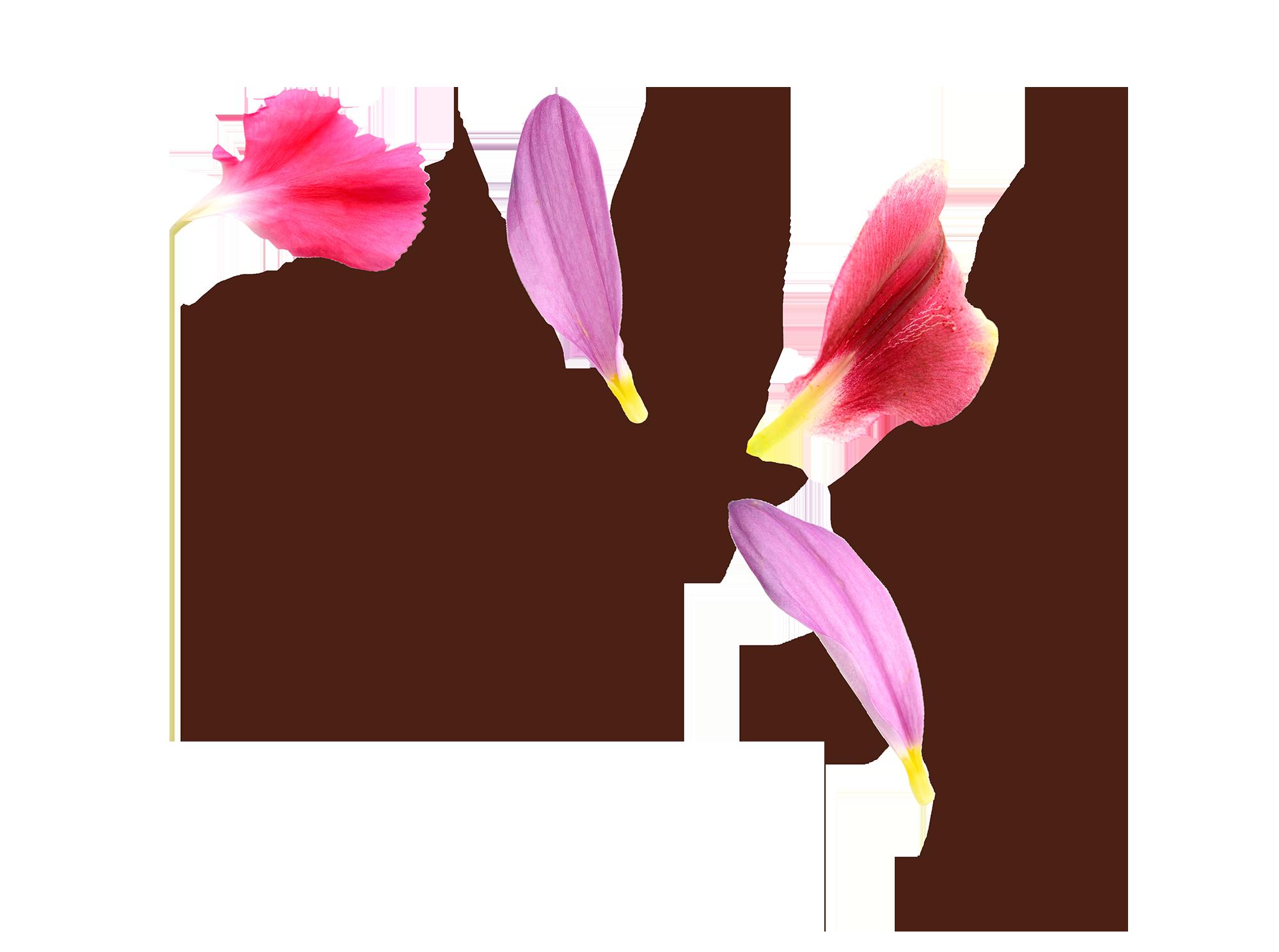 floral1.png