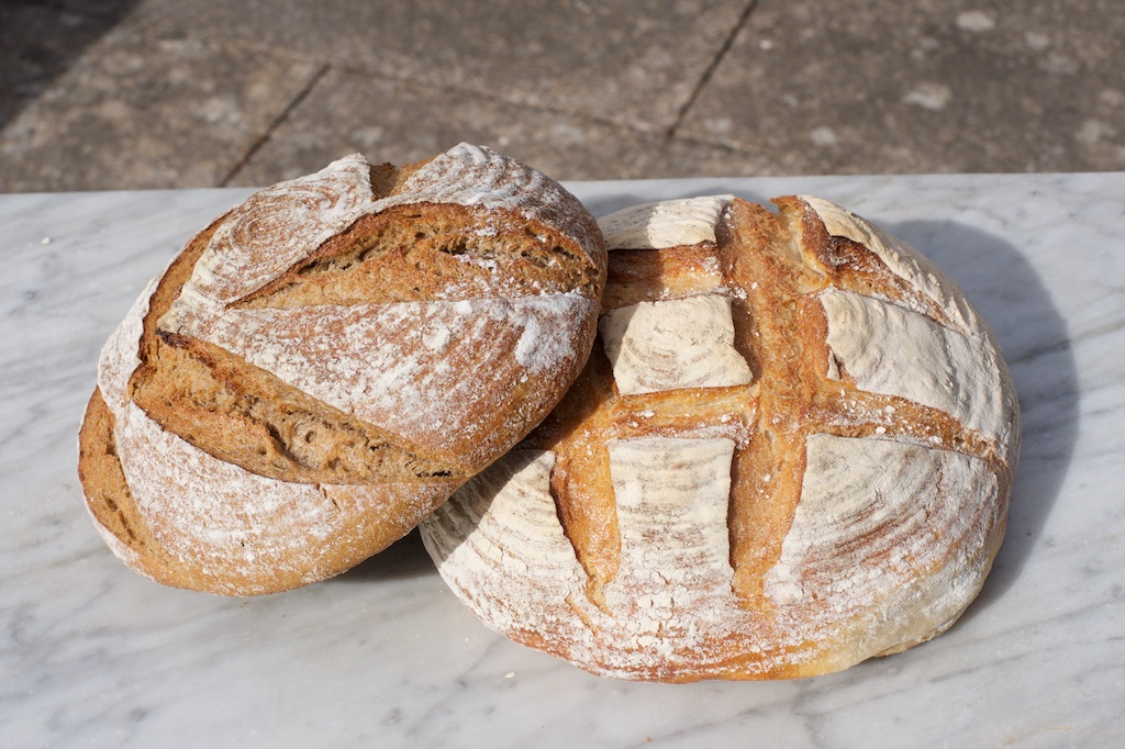 COBS Sourdough Boules.jpg