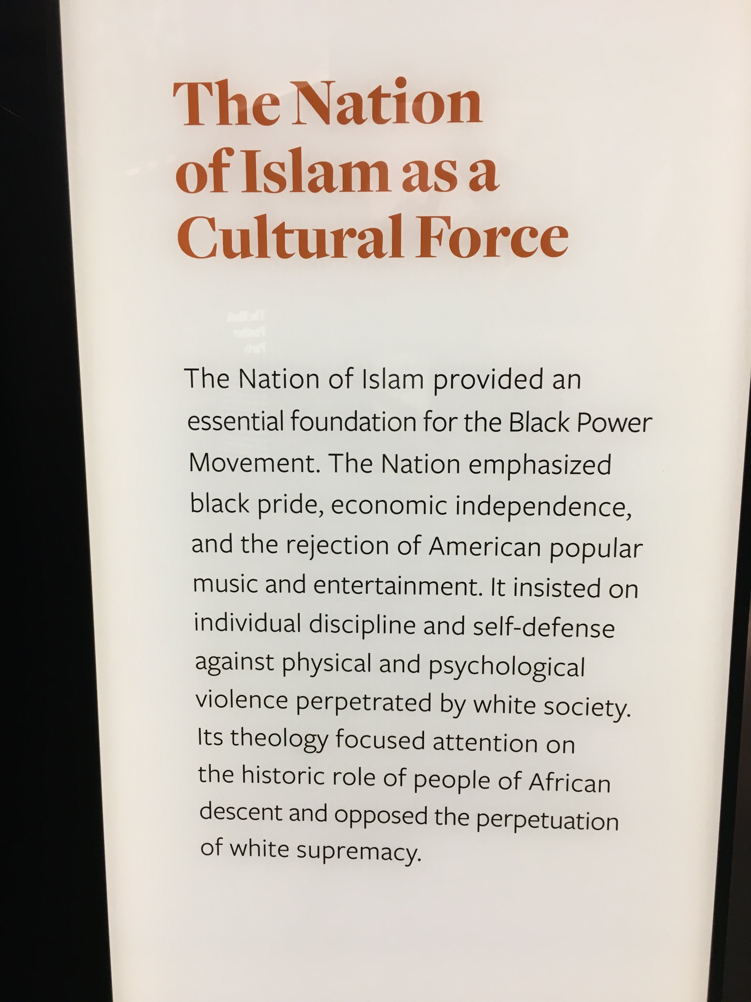 The Nation of Islam Meets Civil Rights