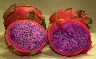 guatemala-red-dragon-fruit.jpg