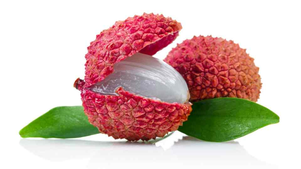 california-tropical-lychee-4.jpg