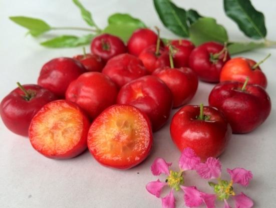 california-tropical-acerola-cherry-1.jpeg