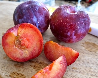 california-tropical-plumcot-2.jpg