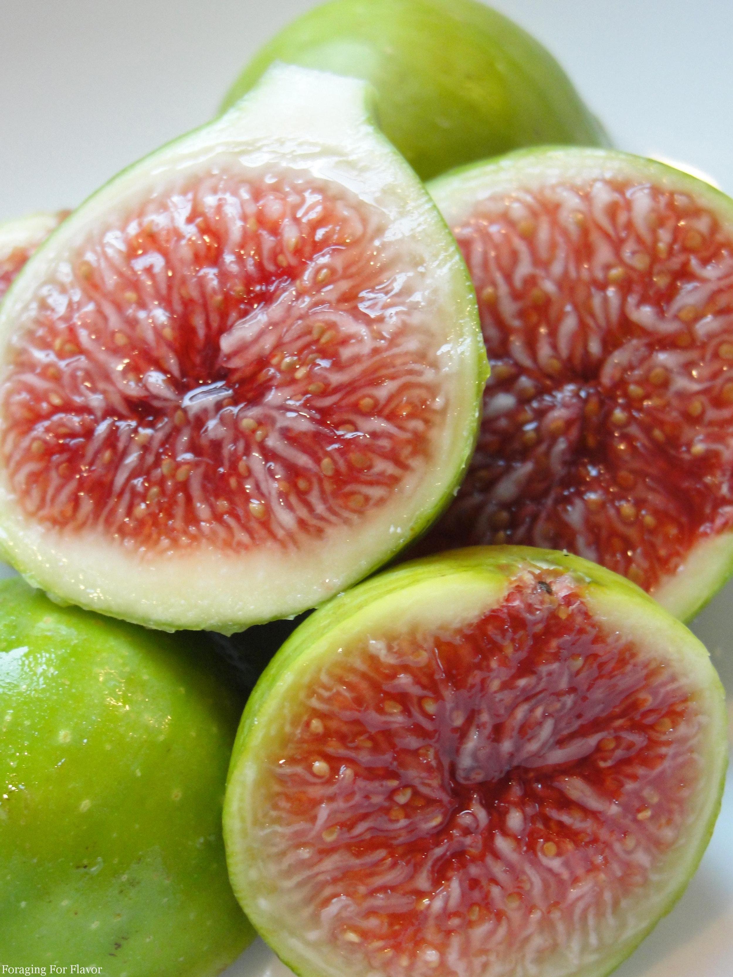 long verte fig