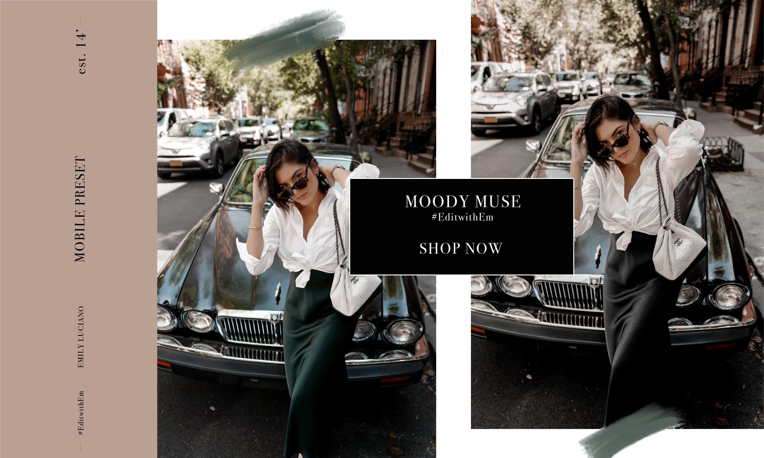 ShopNow_MoodyMuse_001.jpg