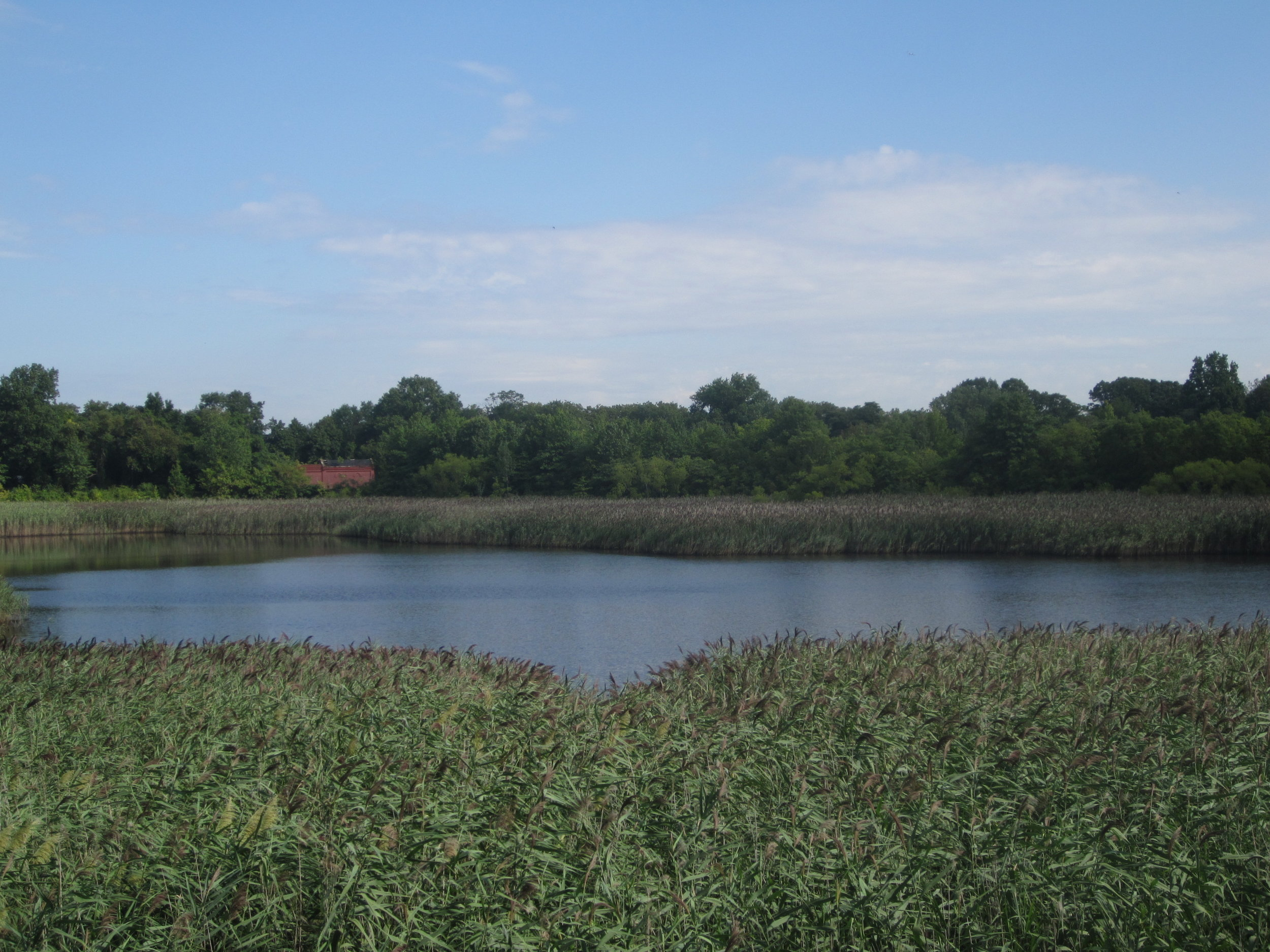 The Ridgewood Reservoir. Photo courtesy of the Newtown Historical Society