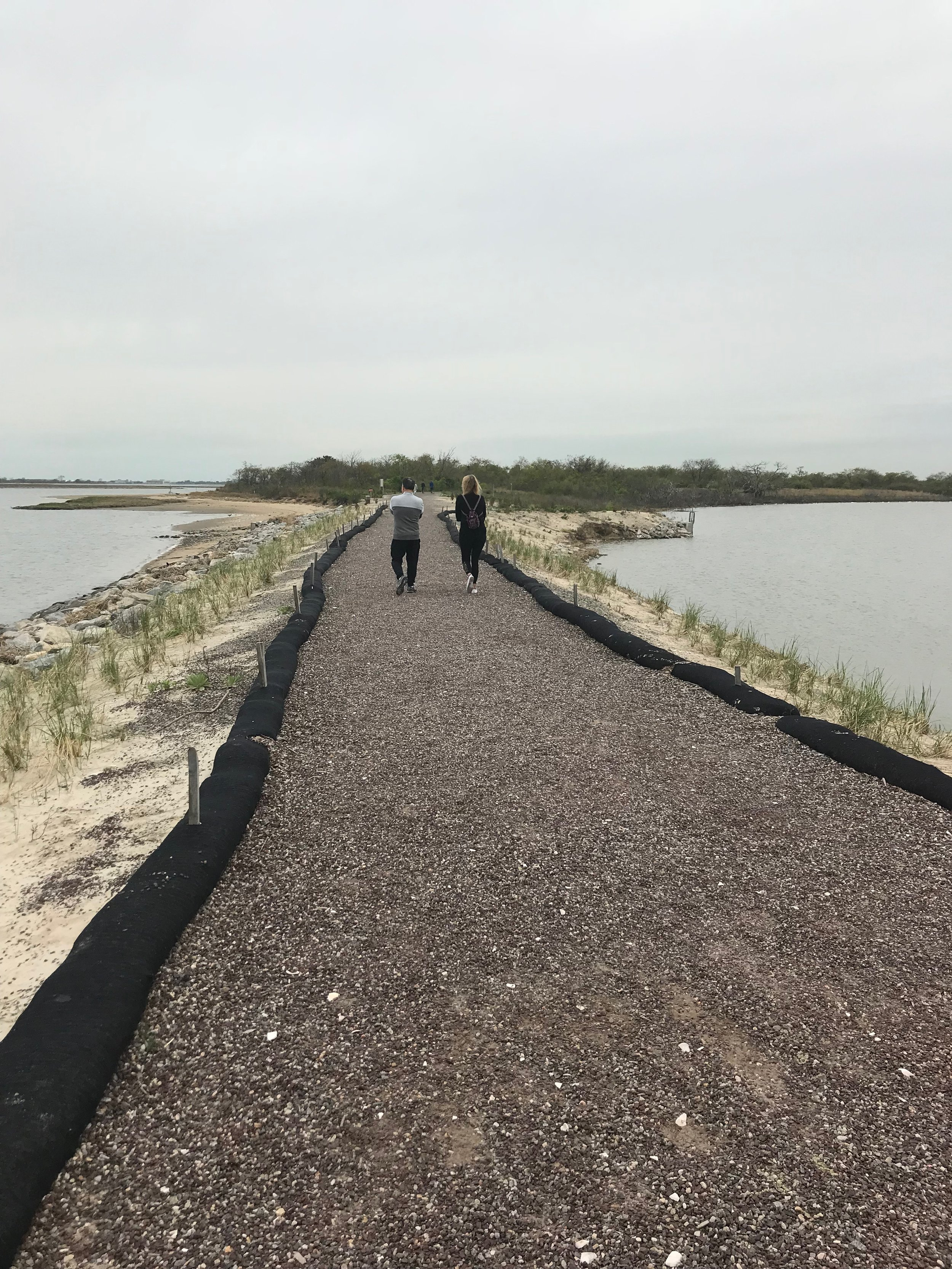 The West Pond Trail at the National Park Service's Jamaica Bay Wildlife Refuge.  Eagle  photo by Jonathan Sperling.