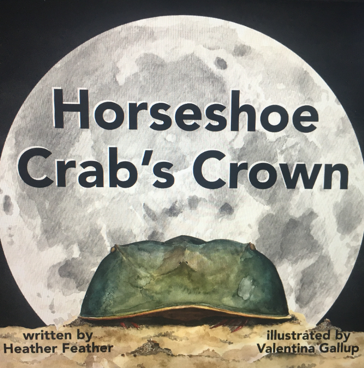 """The cover of """"Horseshoe Crab's Crown."""" Image courtesy of Heather Feather."""