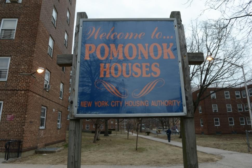 The Pomonok Houses have the fourth-most households with children under 6 years old among the city's hundreds of NYCHA complexes. Photo by JDtheOne via Wikimedia Commons