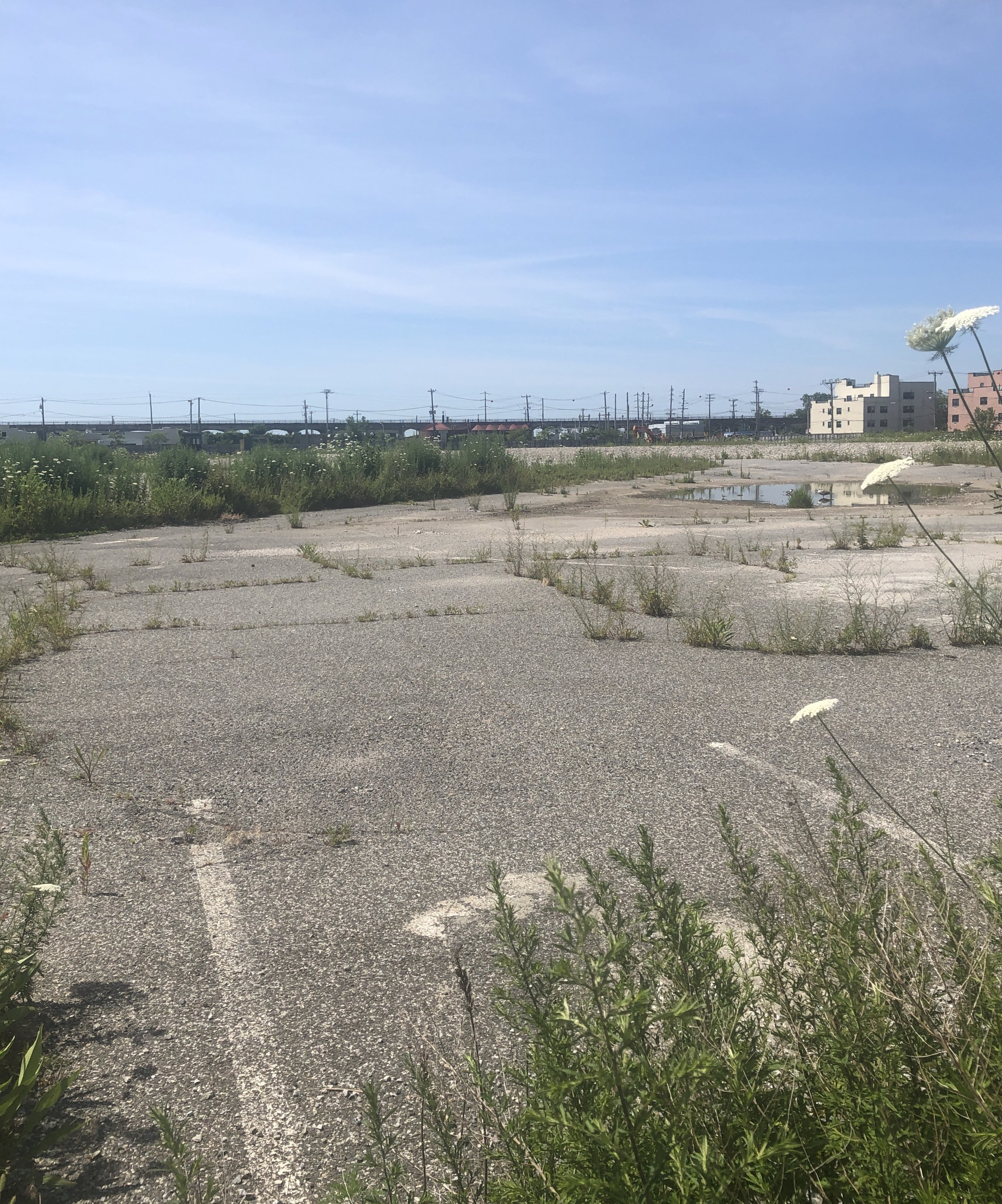 A 2,200-unit housing development is proposed at the site of a vacant lot in Edgmere, the former location of Peninsula Hospital.  Eagle  photo by Rachel Vick.