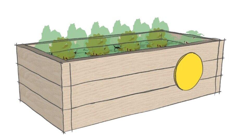 letting+grow+flower+bed.jpg