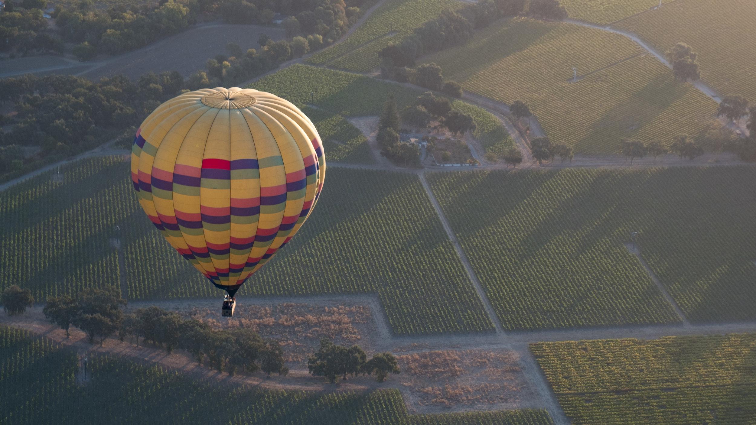 Napa Valley Balloon