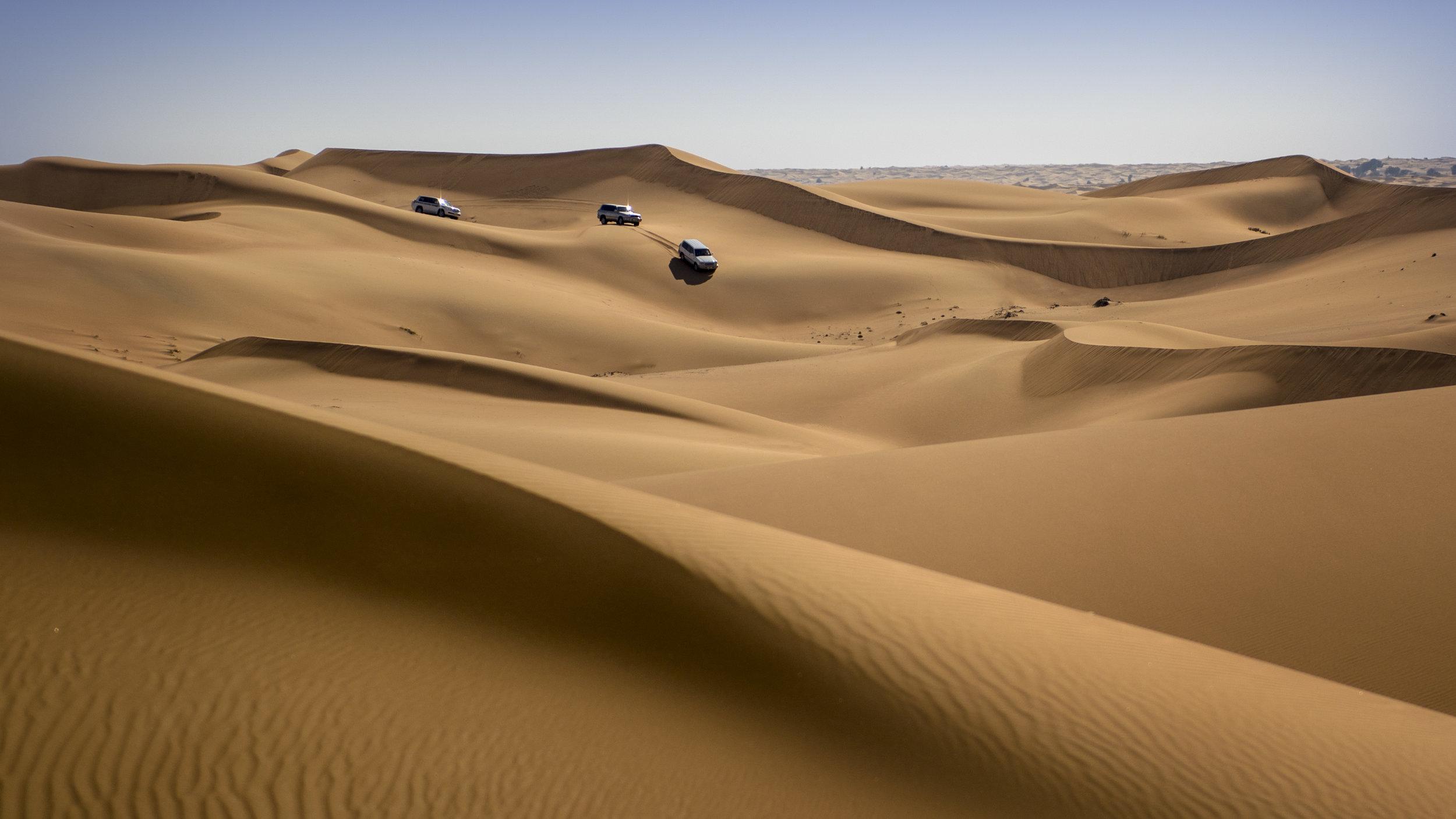 Dubia Desert