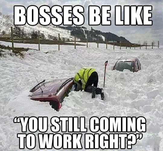 cold weather meme.jpg