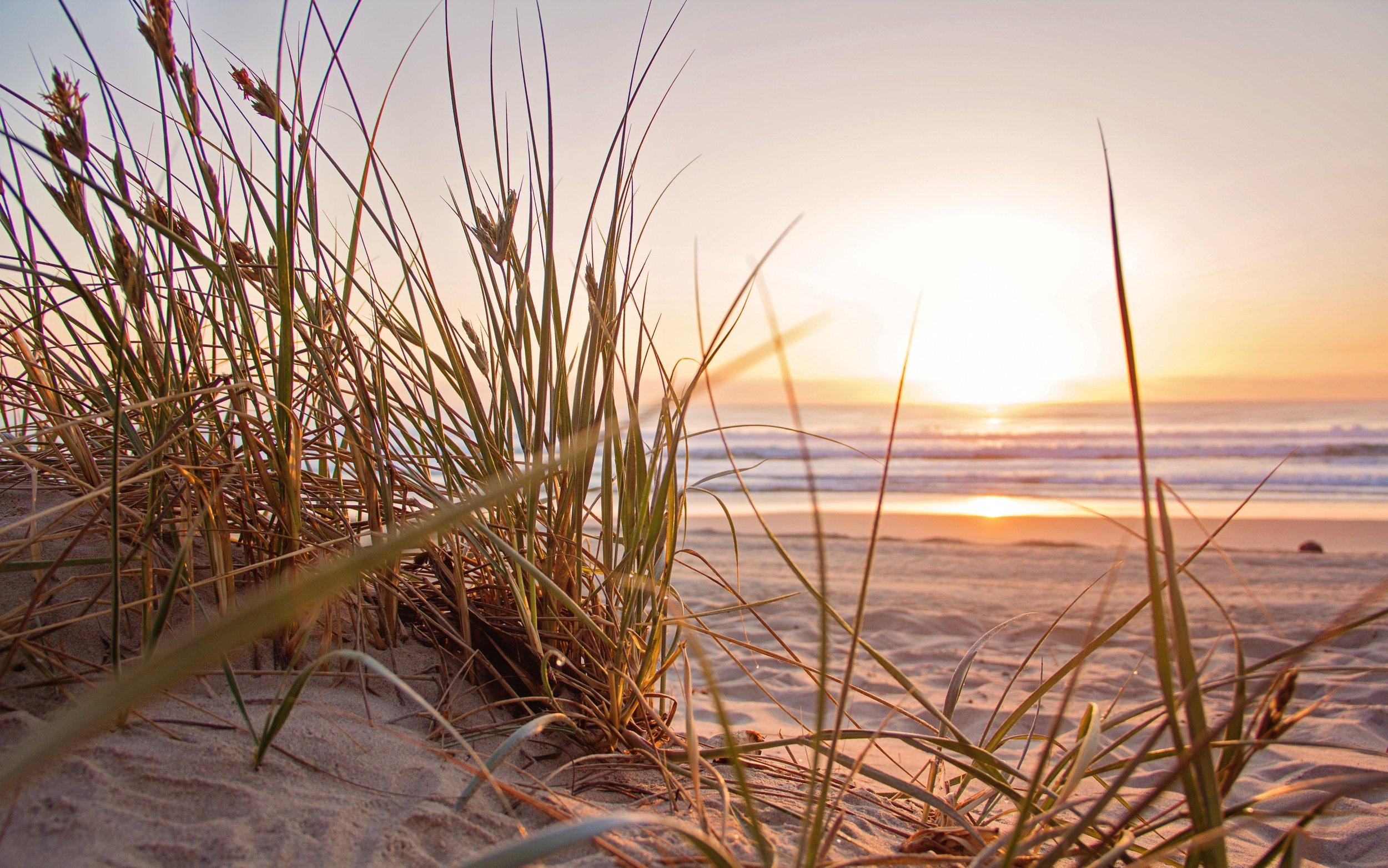 beach-dawn-evening-1300510.jpg