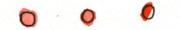 dots5.png