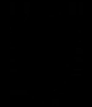 AGOlogo_black_300.png