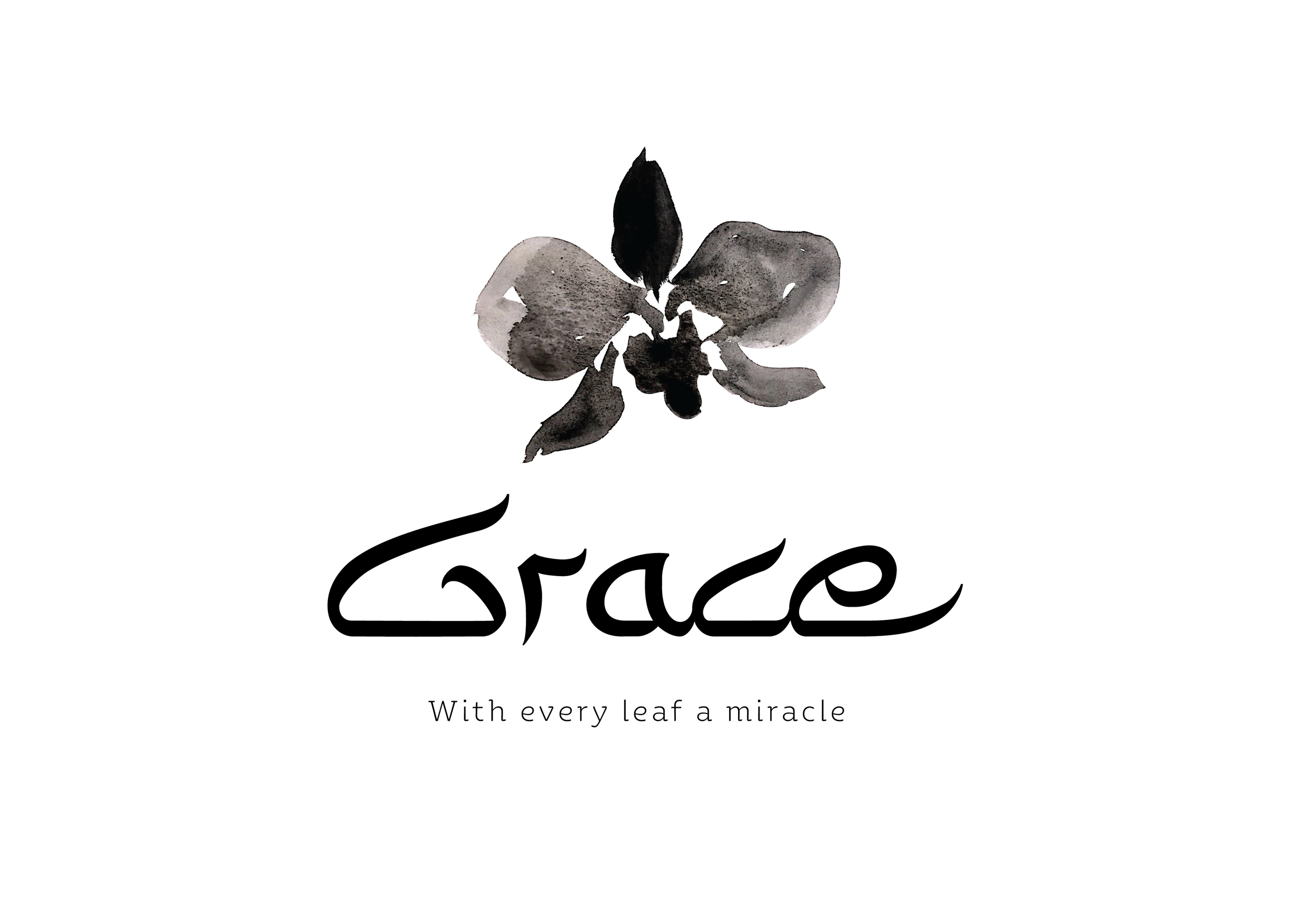 לוגו גרייס-01.png