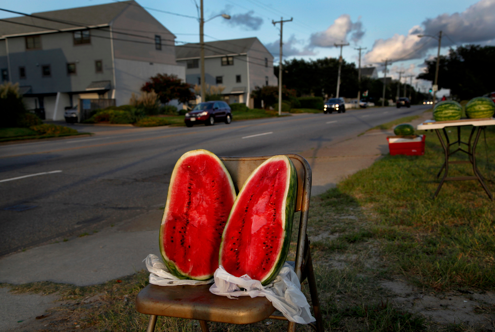 Watermelons, 2013