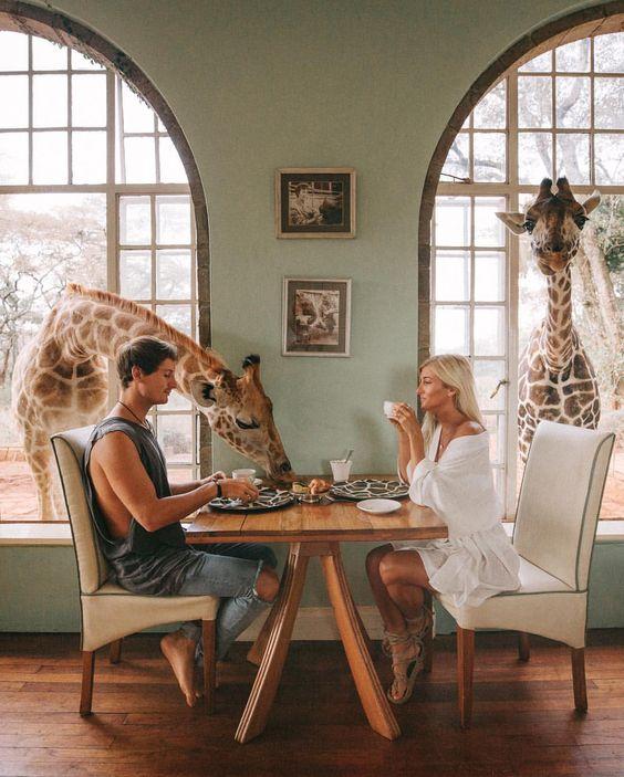 giraffe manor.jpeg