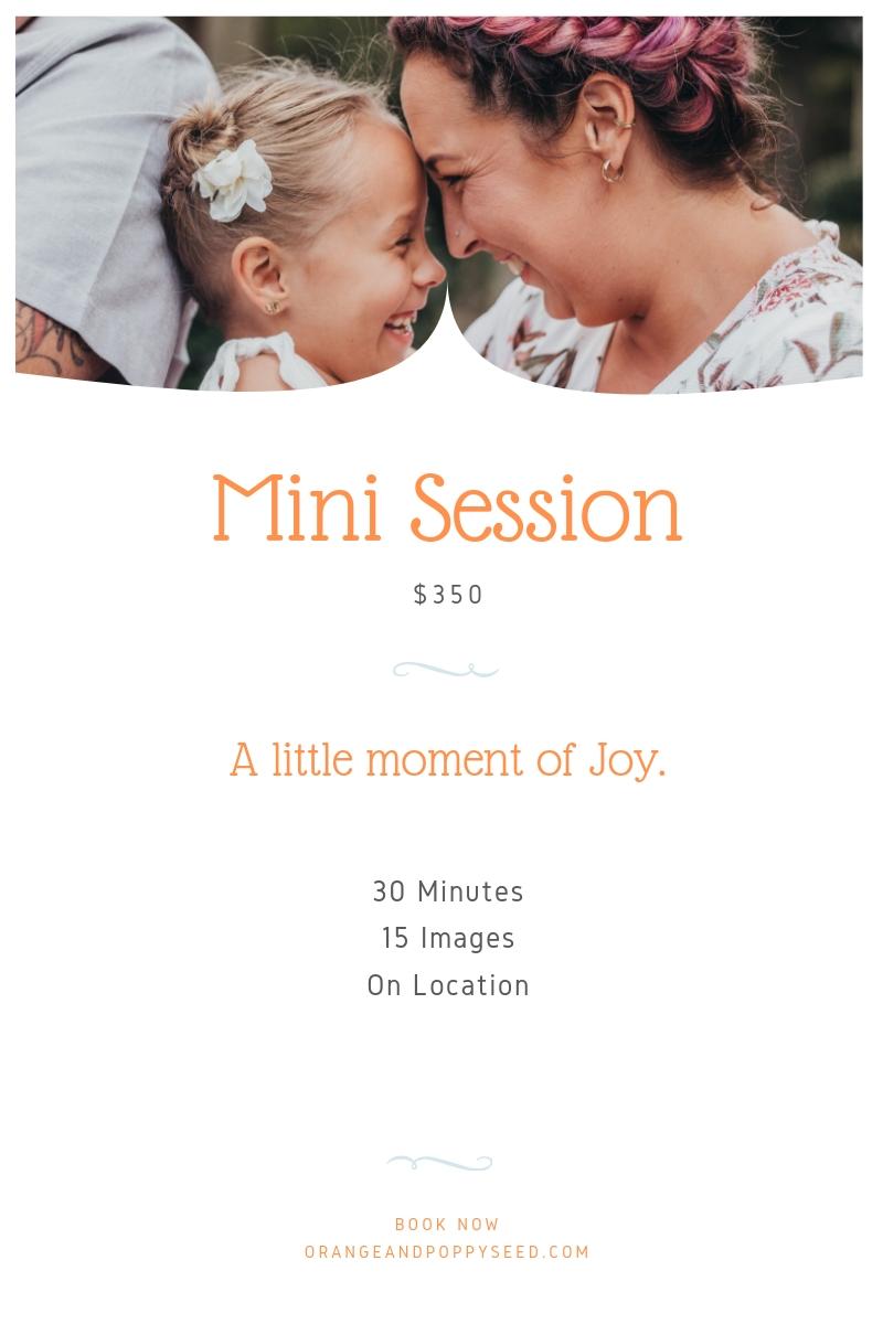 Mini Session.jpg