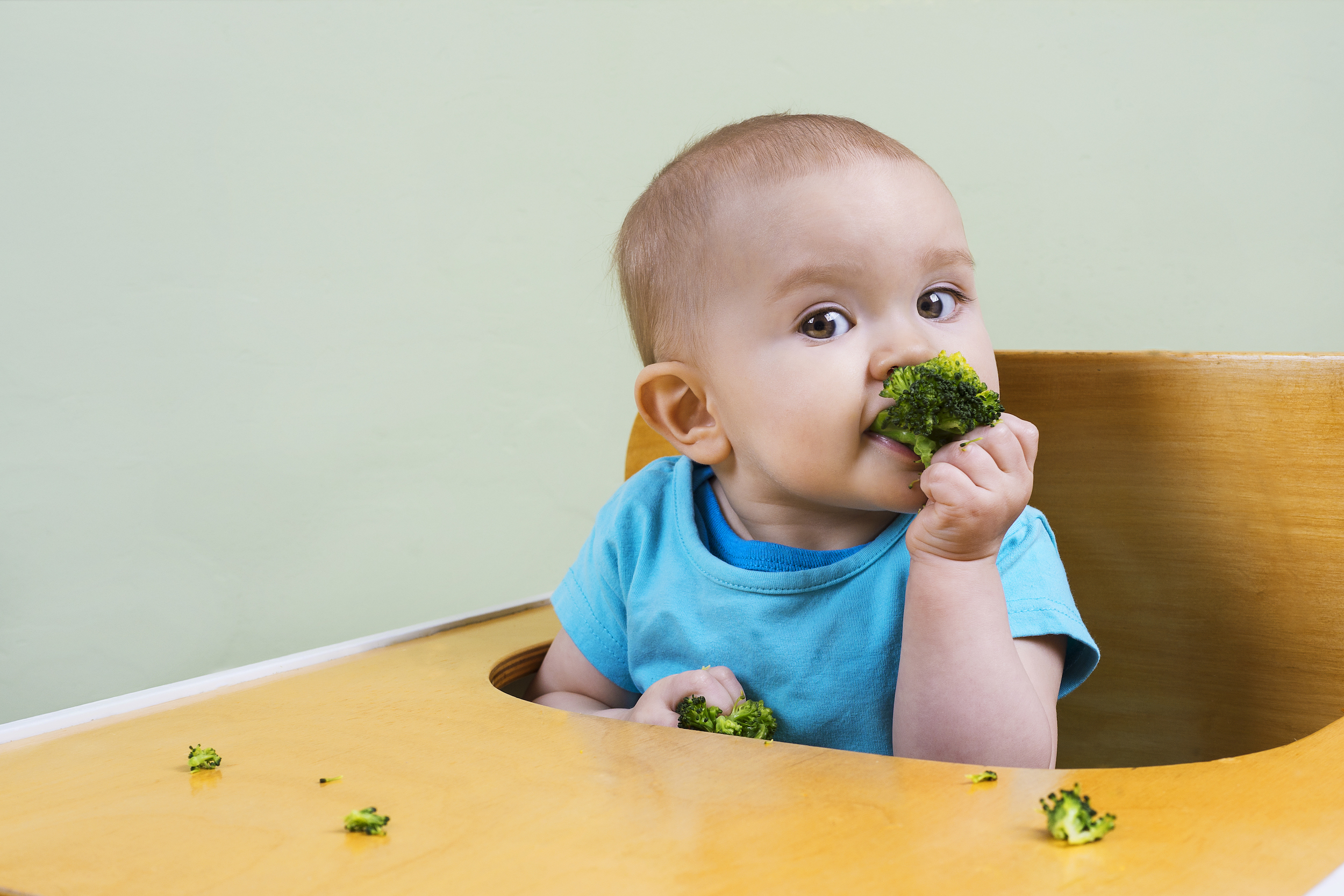 Baby-Led Weaning: Ask an Expert