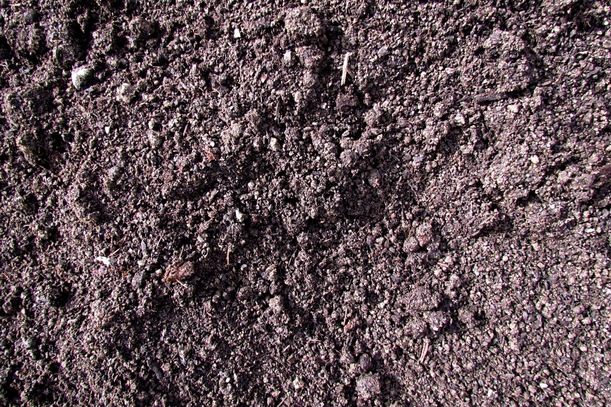 3. SUPERSOIL - A 50/50 mix of our top-selling BlenBio Compost & 10mm Screened Topsoil that works especially well in vegetable gardens etc as a great base for growing things. Perfect for topping off your filled raised garden bed with.Check our soil range here!