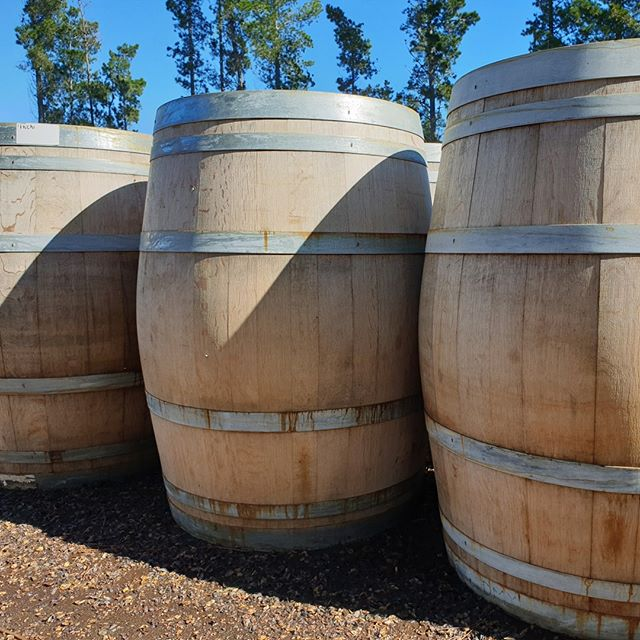 We have a stack of beautiful pale barrels in stock at the moment, clean enough for inside and outside the home! Snap up the best one for yourself before they all go. #winebarrels #onlymarlborough #lovemarlborough #brillianteveryday #blenheimnz #blenheimbusiness
