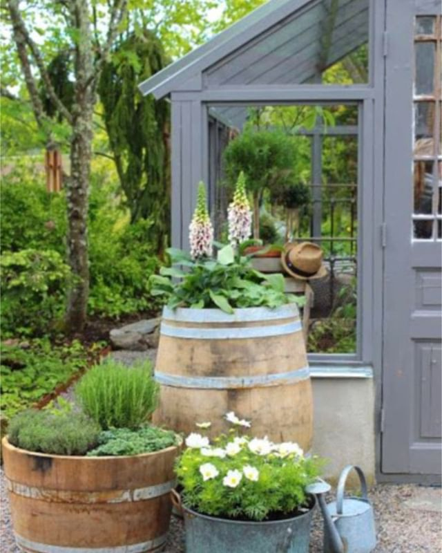 When it comes to wine barrels, this is our favourite way to utilize them! What is yours? Recycling a used wine barrel as a herb garden is a great way to be responsible, and they look so good in any garden type! #winebarrels #gardeninspo #onlymarlborough #brillianteveryday #lovemarlborough #blenhiem #marlboroughsounds #blenhiembusiness