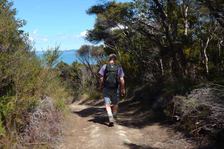 The trail - Take a journey over diverse landscapes and discover a special part of the Kaipara, cared for by the same family for over 6 generations.