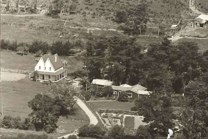 About-Homestead.jpg