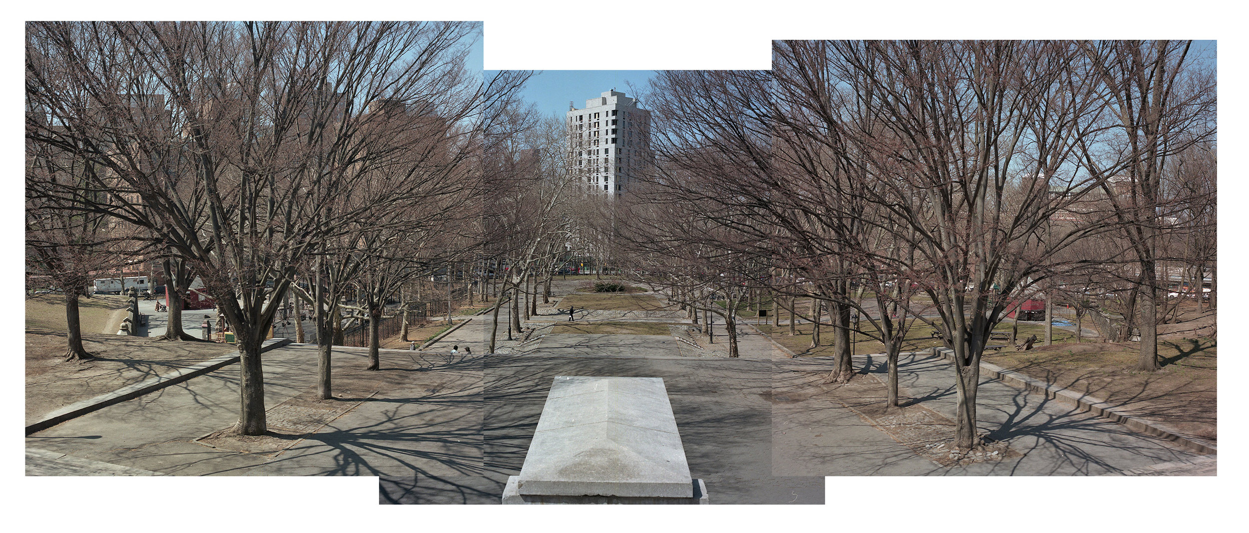 Three photo panorama of Fort Greene Park in Brooklyn. As of Spring 2019, there are proposed plans to remove the six Zelkova trees in the foreground along with about 40 other healthy trees.