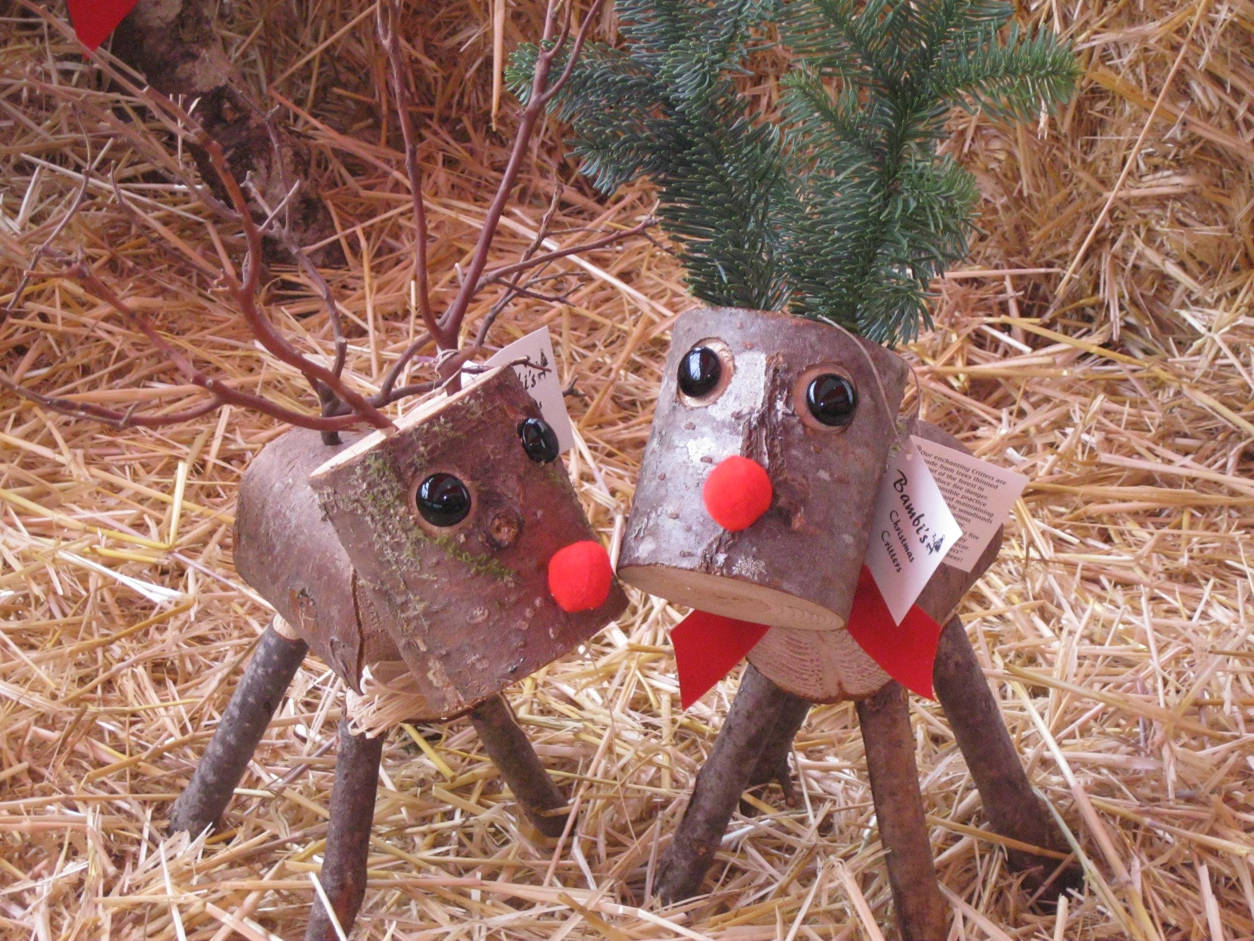 Reindeer_small.JPG