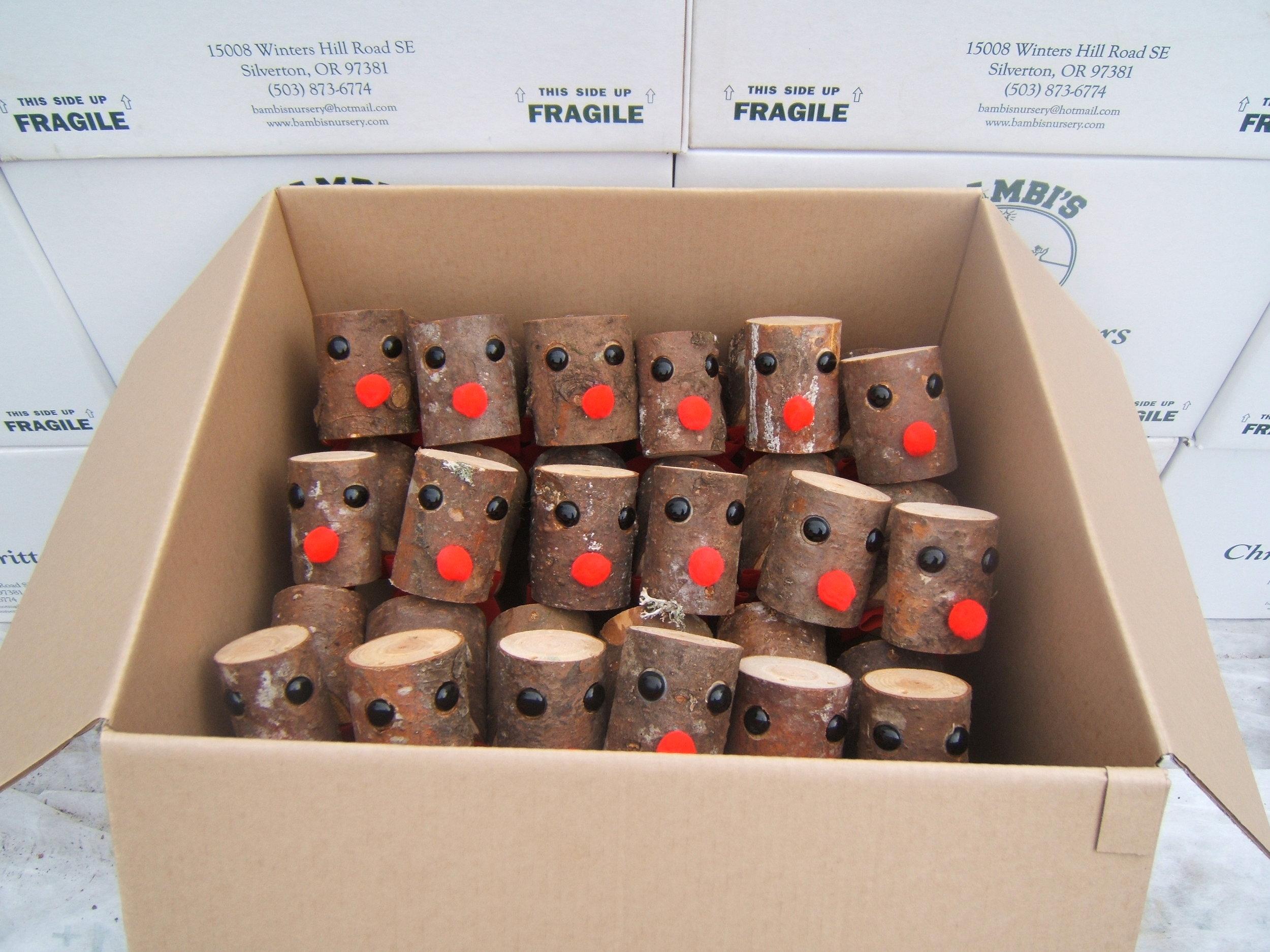 ReindeerInBox.JPG
