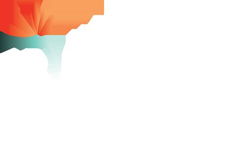 IrvineHalf_Logo_WhiteColor_Transparent copy.png