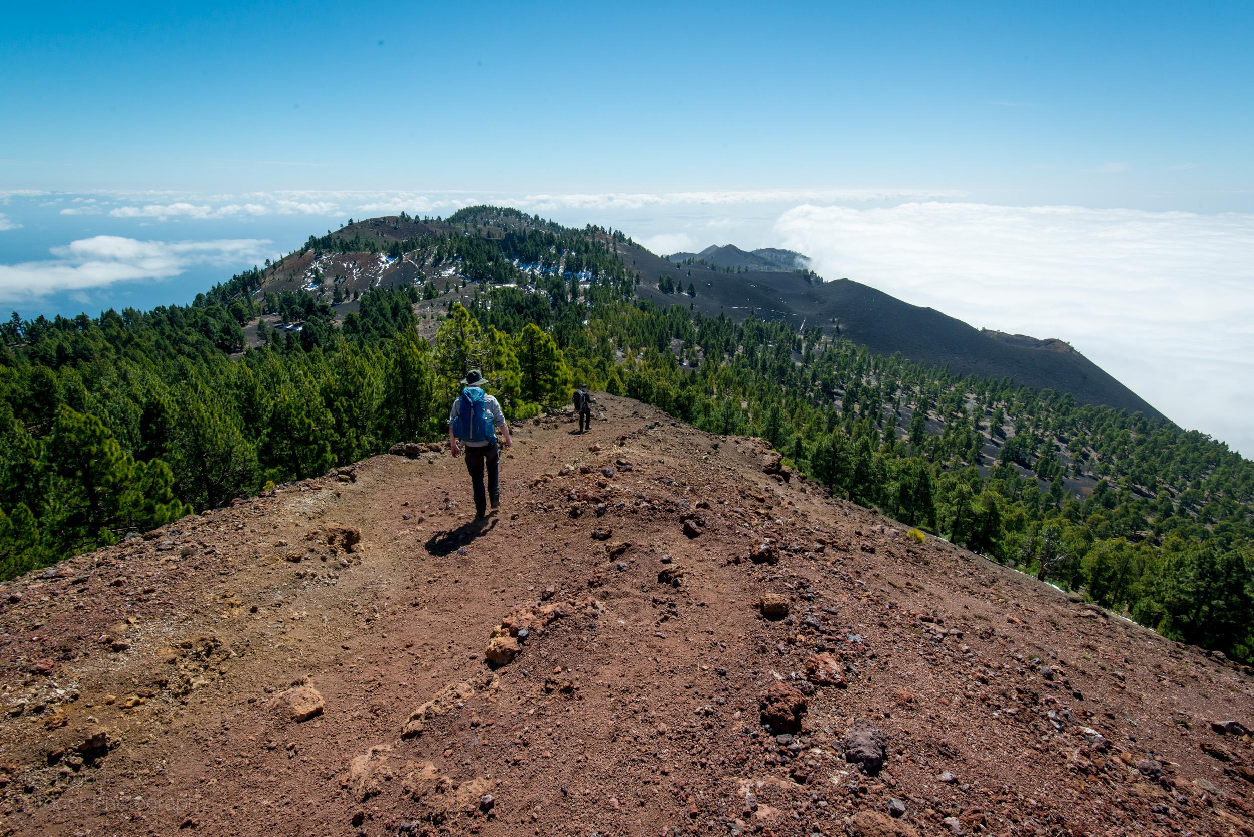 La Palma-16.jpg