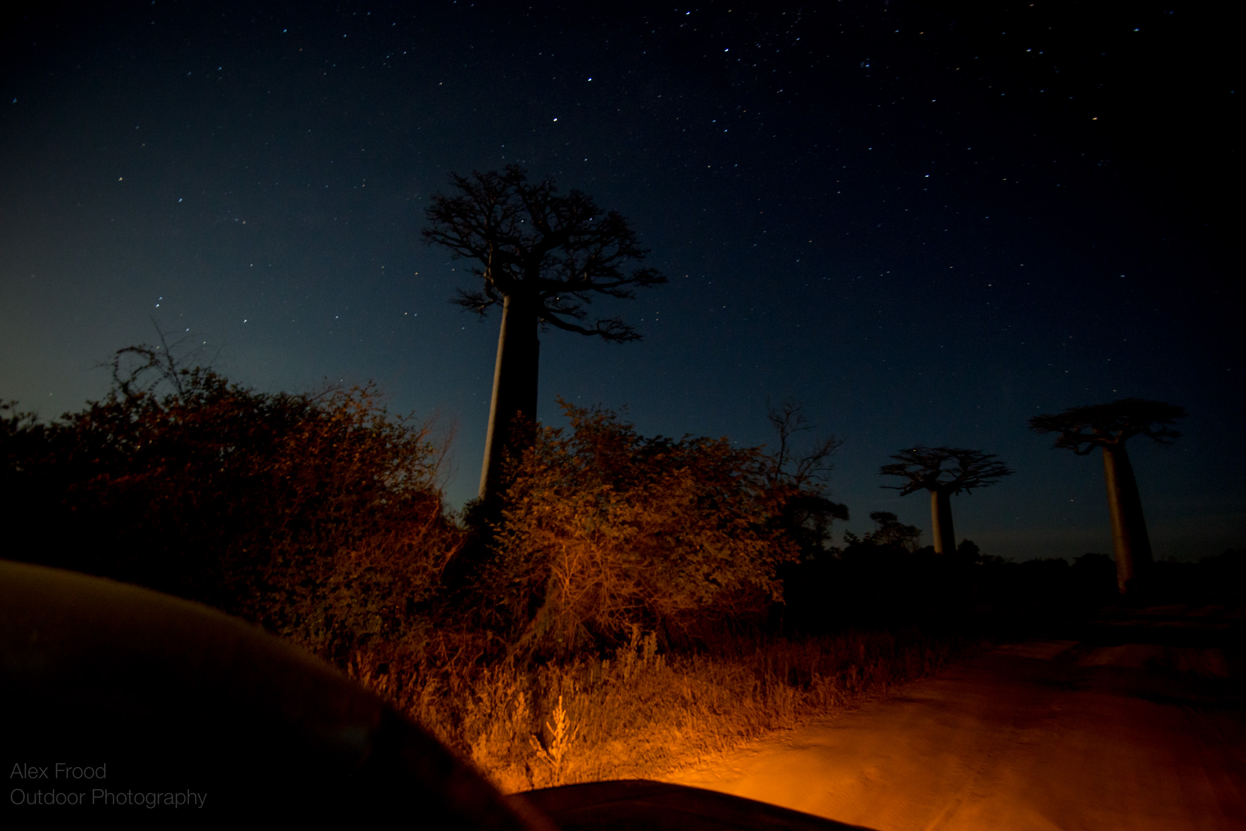 Madagascar-23.jpg