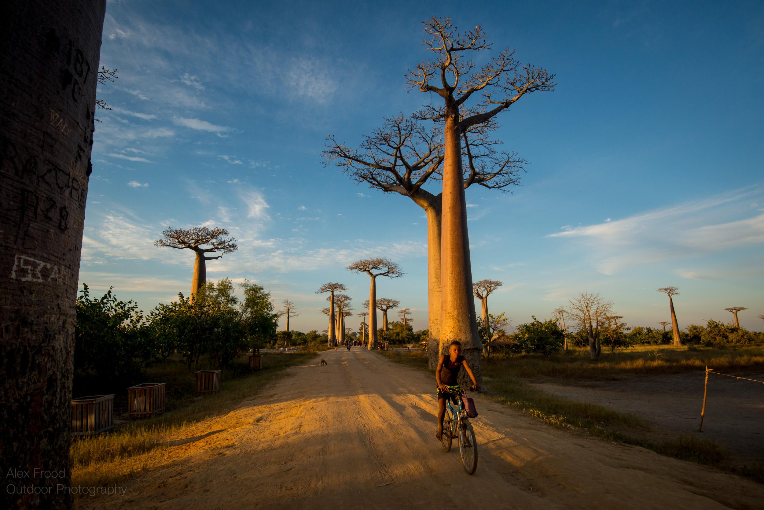 Madagascar-25.jpg