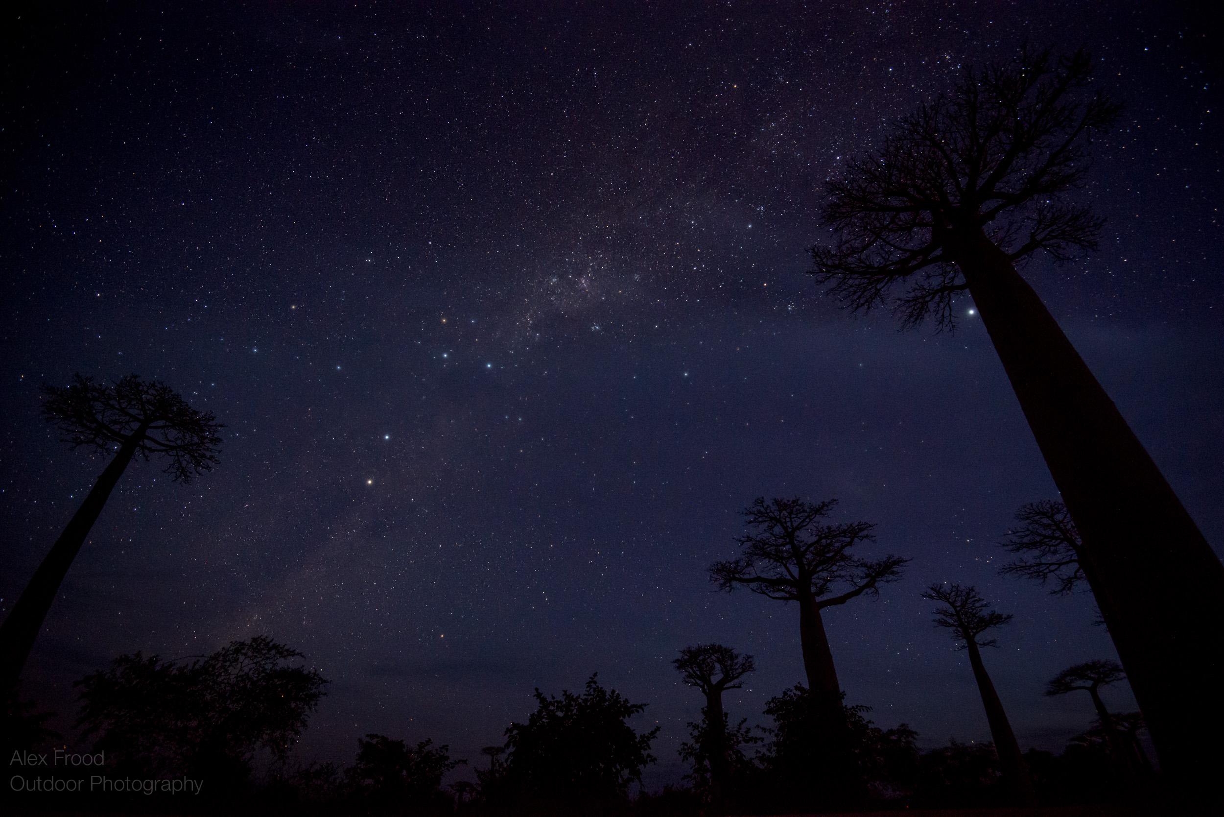 Madagascar-26.jpg