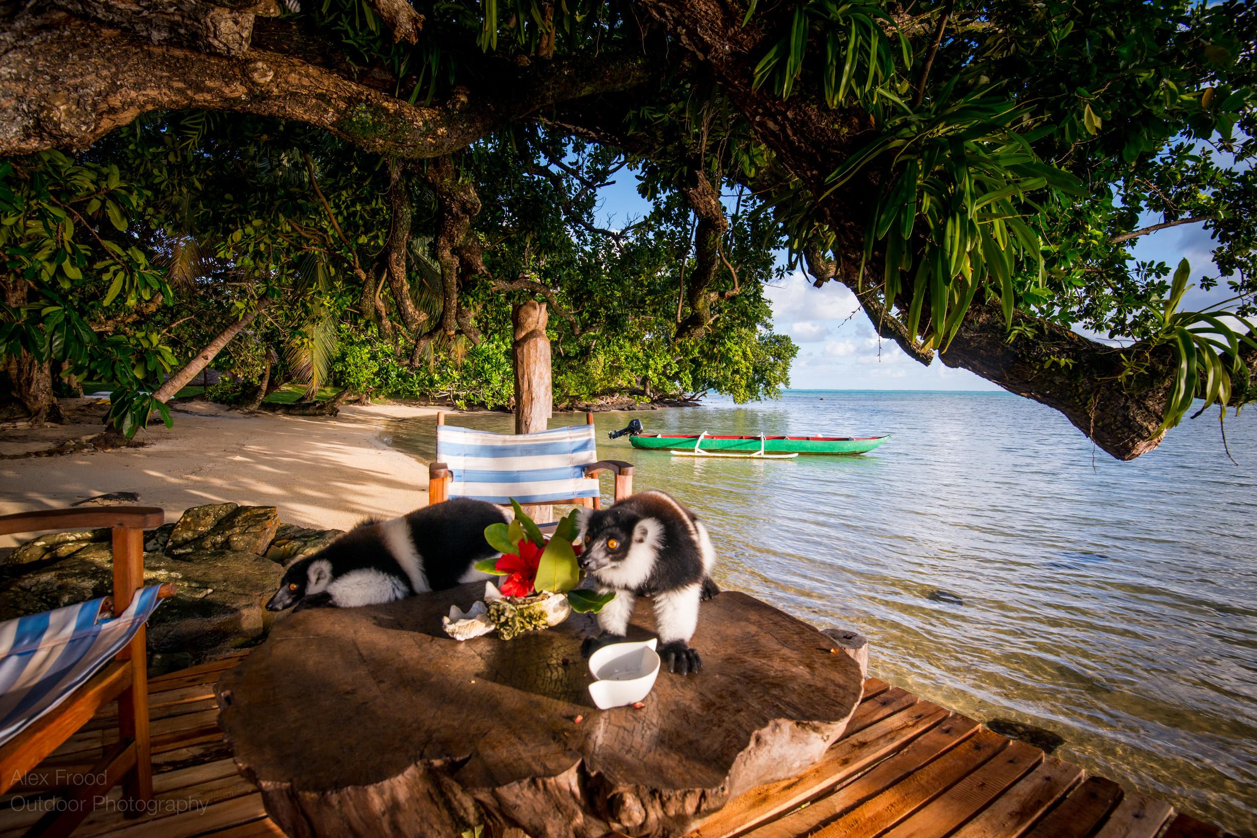 Madagascar-66.jpg