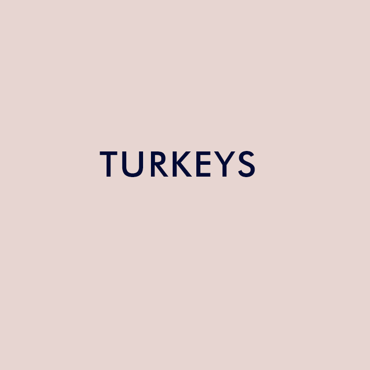 Turkeys .jpg