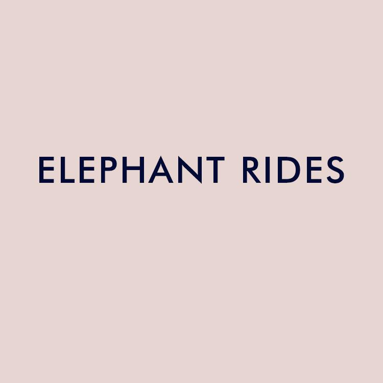 elephant-rides.jpg