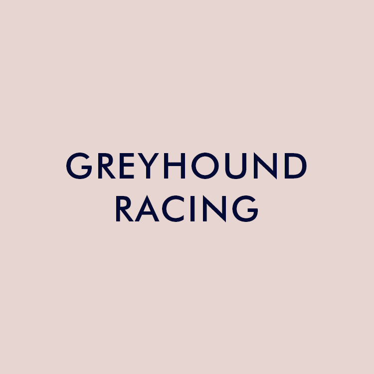 greyhound-racing.jpg