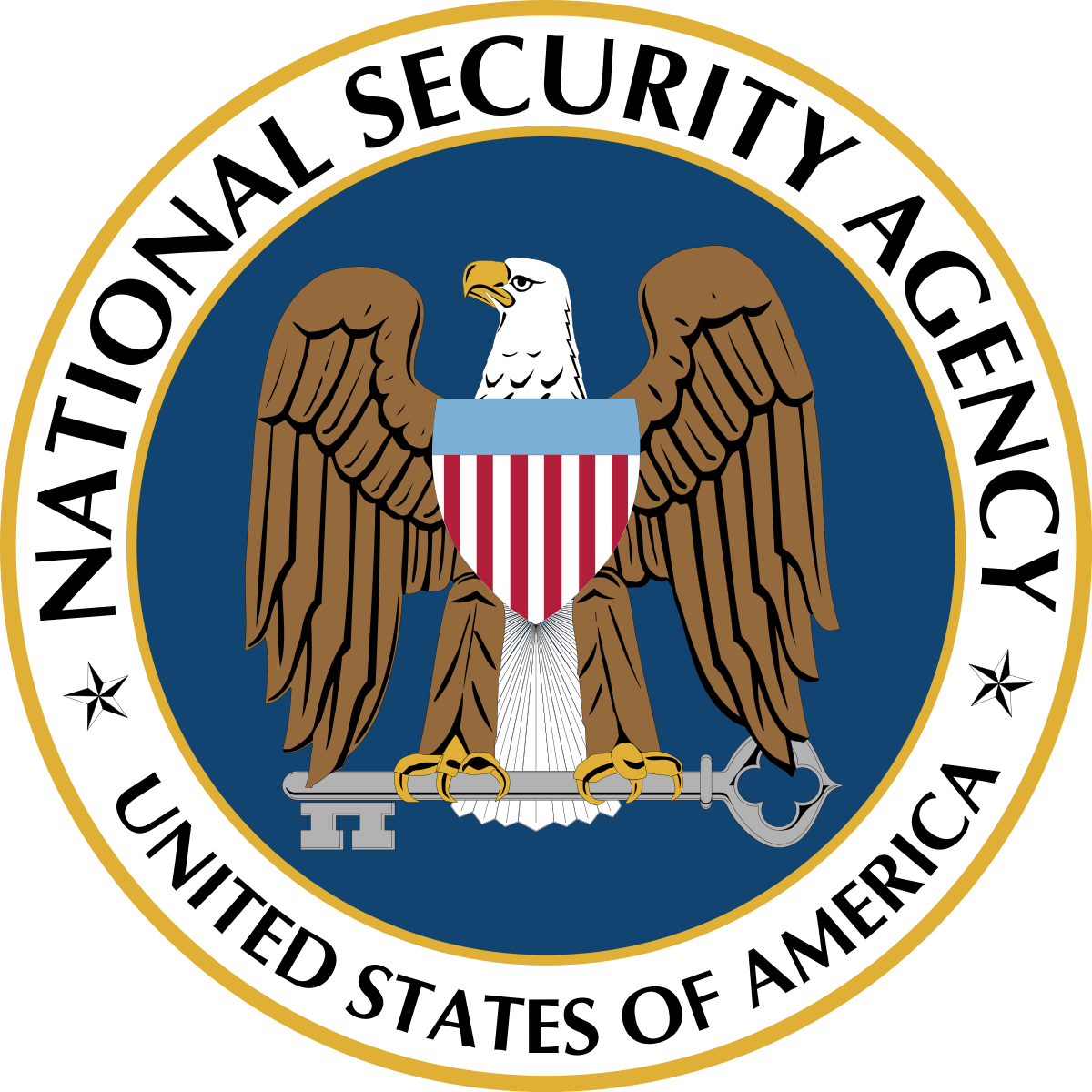 nsa1.png
