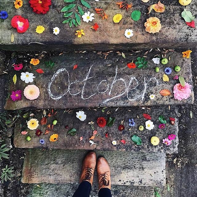 This makes me smile a lot @themoon_journal and @blowyinthewind thank you for reminding me that October is such a beautiful month 🙌🍂. 📷 @blowyinthewind #autumn #autumninscotland #perthshire #flowerpower #colourtherapy