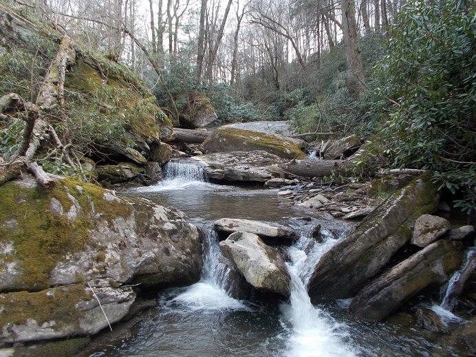 Lower Pond Creek Trail.jpg