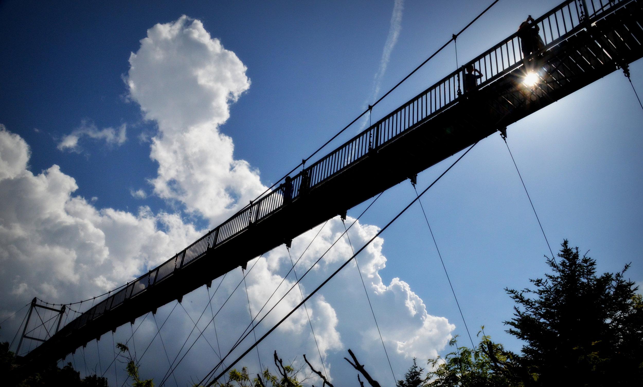 Bridge No Border - V. Darlington.jpg