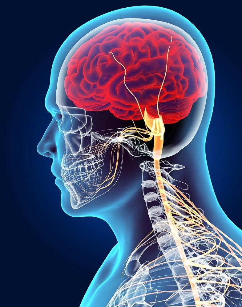 neurological.jpg