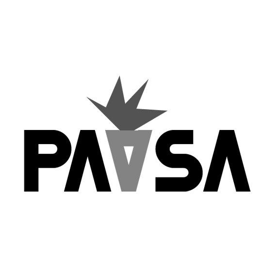 pav_web.jpg