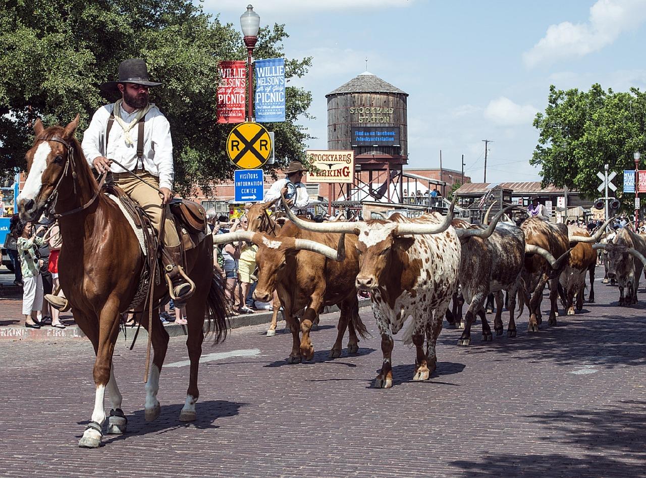 cowboys-720791_1280.jpg